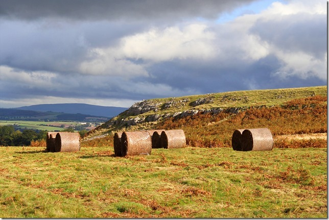 bracken%20bales%20under%20heughscar1