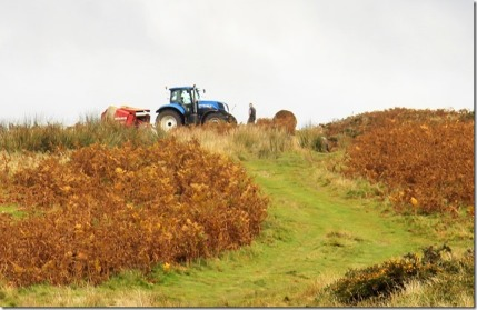 tractor%20at%20work%20collecting%20bracken%20bales1