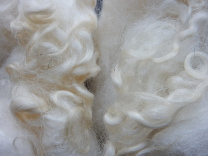 Bluefaced Leicester wool